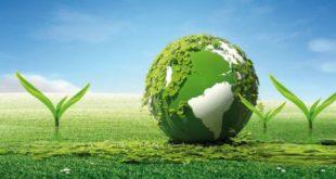 زمین پاک1